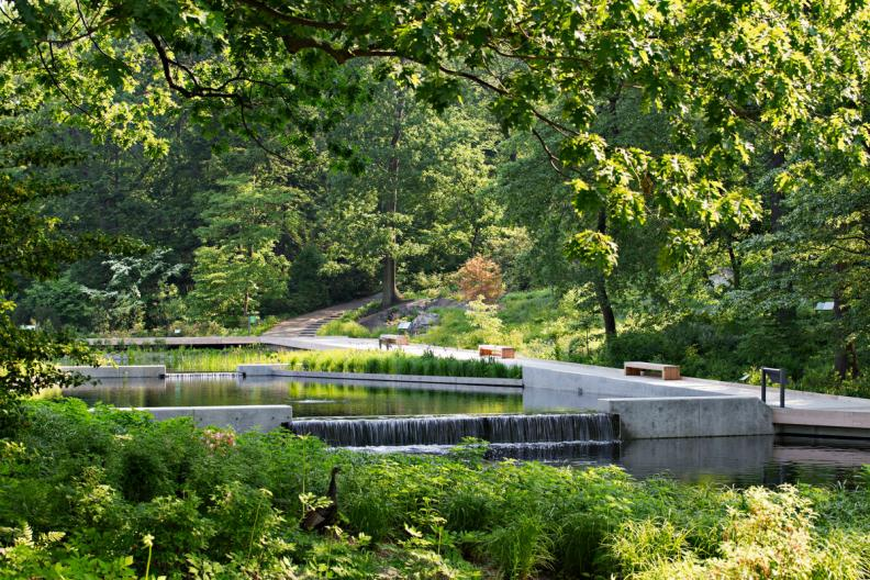 New York Botanical Garden Sustainability Summit | Crain\'s New York ...